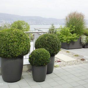 Gruppe Delta - Pflanzengefäß - Gartenprodukte von Eternit bei Dachpower Grödig - copyright Eternit