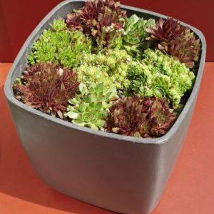 Osaka - Gartenprodukte von Eternit bei Dachpower Grödig - copyright Eternit