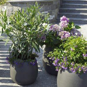 Sumo-Gruppe-Pflanzenbehälter - Gartenprodukte von Eternit bei Dachpower Grödig - copyright Eternit